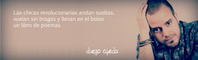 150424 - WORDPRESS - DIEGO OJEDA 01