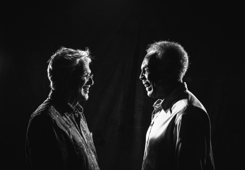 word press - Caetano&Gil